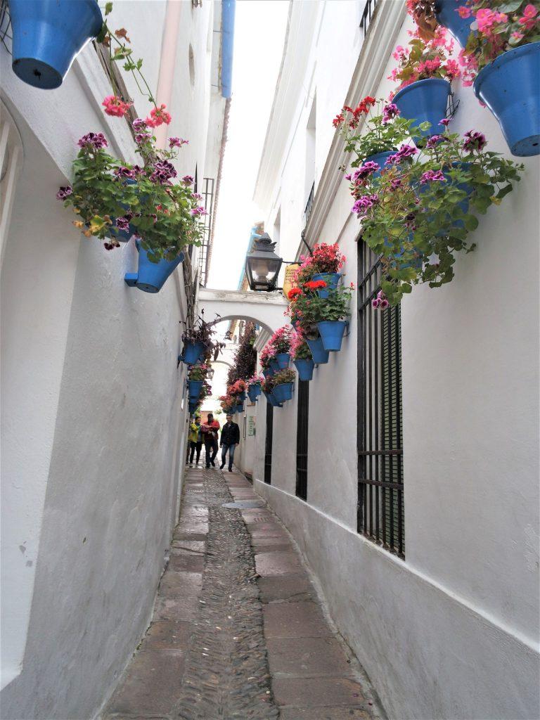 Torremolinos wycieczki